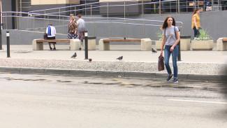Воронежские активисты объяснили, зачем объявили траур по убранным пешеходным переходам
