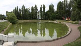 Ремонт чаши озера на улице Минской в Воронеже оценили в 7 млн рублей