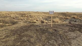В Воронежской области убрали остатки уничтоженного кладбища из фильма Алексея Учителя