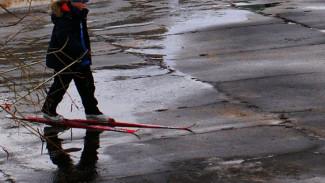 День зимних видов спорта состоится в Воронеже при любой погоде