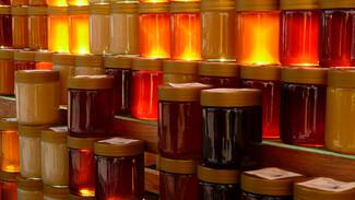 В Воронеж привезут мёд со всего Черноземья и Кубани