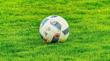 В крупном микрорайоне Воронежа построят футбольный манеж