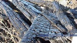 За 1,5 месяца в селе Новотроицкое произошло 5 пожаров