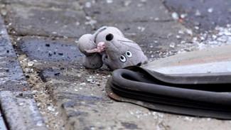 При лобовом столкновении двух авто в Воронежской области пострадали 2 маленьких брата