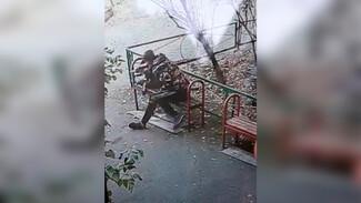 Появилось видео жестокого избиения 2-летнего мальчика в воронежском дворе