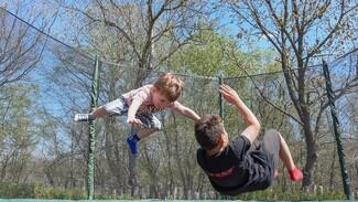 Воронежские власти отклонили 20 тыс. заявлений на получение выплат на детей от 3 до 7 лет