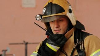 Спасатели попросили воронежцев не паниковать во время учений
