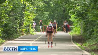 В Воронеже смоделировали трассу будущего чемпионата мира по лыжероллерам в Швеции