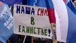 Воронежцы отметили День народного единства митингом