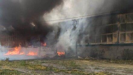 В Воронежской области вспыхнул завод растительных масел