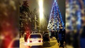 Воронежец внезапно устроил новогодний праздник в одном из крупнейших городских парков