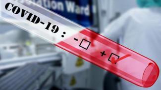 Число погибших от коронавируса россиян выросло до 5