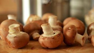 47 человек попали в больницы Воронежской области за неделю из-за грибов!