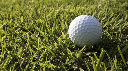 Поле для мини-гольфа появилось в Центральном парке Воронежа