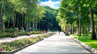 Воронежское такси устроит для горожан бесплатный концерт в Центральном парке