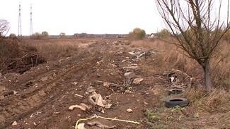 Под Воронежем у реки появилась дорога из мусора