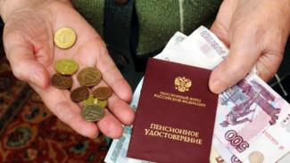 В Воронежской области повысят прожиточный минимум для пенсионеров