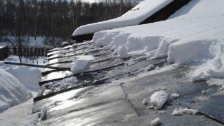 В Воронежской области под тяжестью снега рухнули крыши пяти жилых домов и соцобъектов