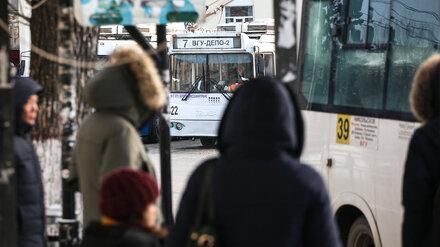 В Воронежской области официально запретили высаживать из транспорта детей-безбилетников