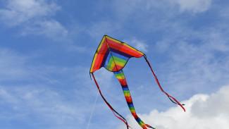 Воронежцев пригласили на бесплатный фестиваль воздушных змеев