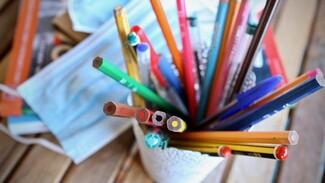 Воронежские санврачи: до 20 школьников в неделю заболевают коронавирусом