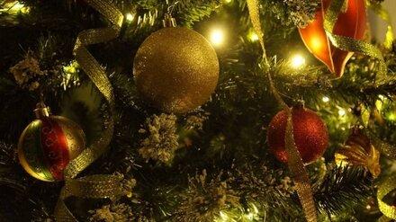 «Научились ценить жизнь». Губернатор поздравил воронежцев с наступающим Новым годом