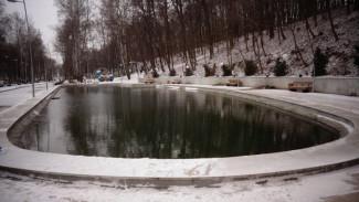 Воронежцев попросили не купаться на Крещение в пруду Центрального парка