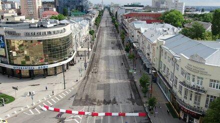 В Воронеже вернулись к идее сделать старинную брусчатку «фишкой» проспекта Революции