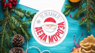 В Воронежской области заработал круглосуточный телеканал Деда Мороза
