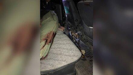 Охотник из Воронежской области ответит в суде за случайный выстрел в знакомого