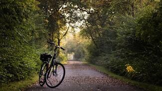 В Воронежской области иномарка сбила 12-летнего велосипедиста