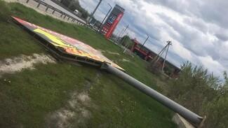Под Воронежем упавший в оживлённом месте билборд убил собаку