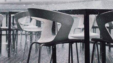 Воронежская область проводит осень дождём и мокрым снегом