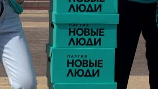 Партия «Новые люди» собрала в Воронеже больше 50 тыс. подписей в свою поддержку