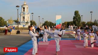 Зачем Воронежу фестиваль стоимостью 4,5 млн рублей перед Днём города