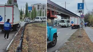 Первая в Воронеже «выделенка» заработает с 20 октября