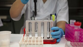 Воронежца с антителами к COVID оштрафовали за отсутствие теста