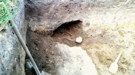 В Воронежской области во дворе дома нашли останки древнего человека