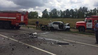 Три человека погибли в ДТП на трассе в Воронежской области