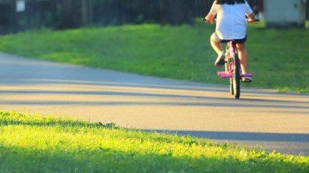 В Воронежской области водитель сбил 9-летнюю девочку на велосипеде
