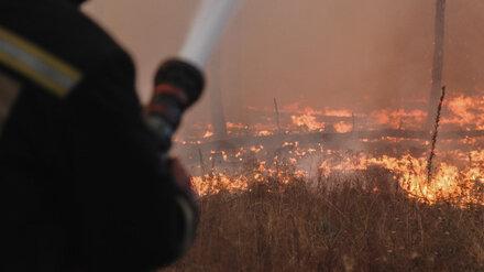 Крупный пожар в воронежском райцентре разросся в 8,5 раз