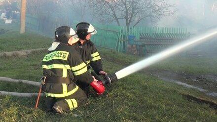 Пожар в воронежском селе добрался до жилых домов