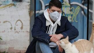 В Черноземье выявили почти тысячу случаев заражения коронавирусом за сутки