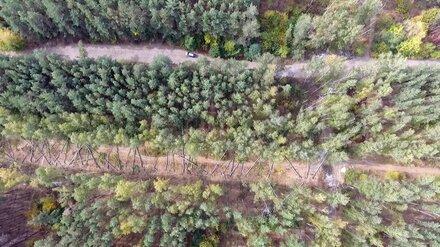 Дорогу для воронежского микрорайона «Электроника» построят к 10 декабря