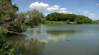 «Двух спасла, а сама утонула». Появились подробности трагедии на пруду под Воронежем