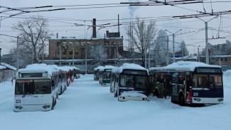 Воронежские троллейбусы ушли на больничный из-за старости
