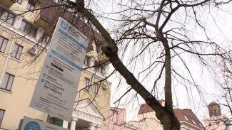 Пятичасовая баталия. Какие аргументы помогли оспорить штраф за неоплату парковки в Воронеже