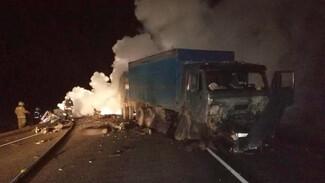 В Воронежской области 22-летний водитель заживо сгорел после ДТП