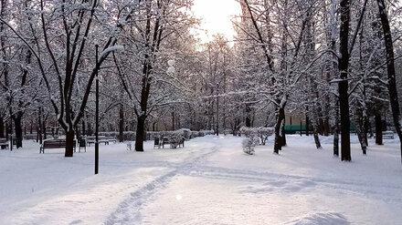 «Зима о себе напомнила». Воронежцы поделились фотографиями мартовского снега