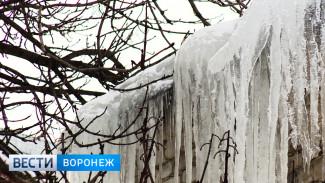 Врачи рассказали о состоянии пострадавших от ледяных глыб воронежцев
